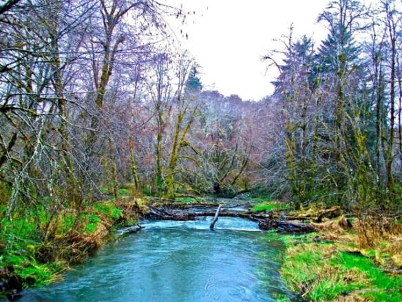 Fishhawk Creek. Oregon.