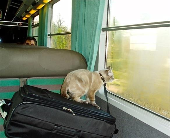 Leaving Lausanne