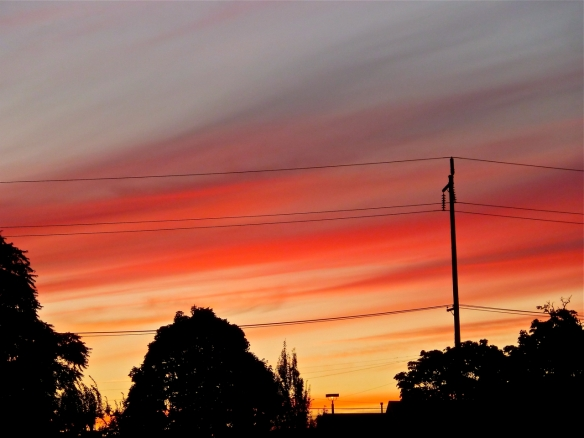 Sellwood Sunset